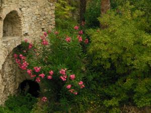 Malen in Ligurien (Italien) – Magie der Farbe   Acryl, Aquarell, Zeichnen, Pastellkreide, Collage, Mischtechnik / Mixed Media, Gouache
