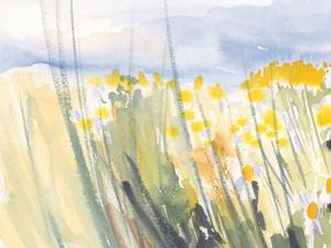 Landschaft, Blumen, Blumenwiese, Pleinairmalerei | Aquarell